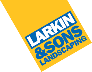 Larkin and sons
